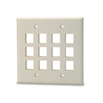 12-Port Double Gang Faceplatew/o Labelin