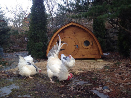 """Our coops add class to any chicken yard!    The Lightfoot coop measures 62"""" x 35"""" x 45""""H.  Front and rear windows open for ventilation.  Bring the Lightfoot Hobbit Hole Chicken Coop home to roost!"""