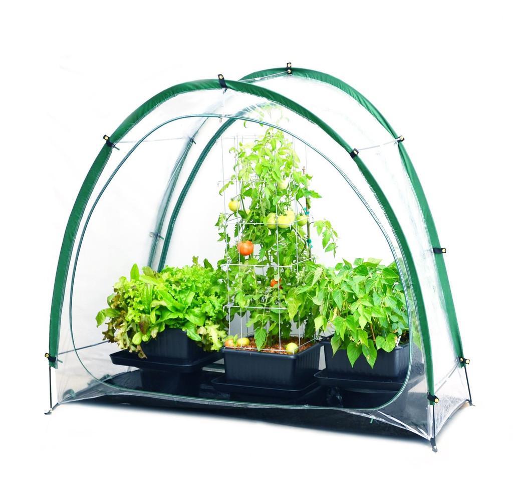 Mini Greenhouse Assembled