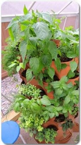 Garden Tower 2 Planted