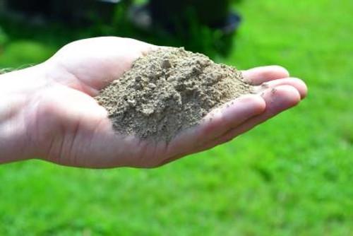 Handful of Glacial Rock Dust