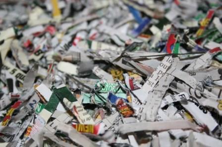 shredded-paper-bedding.jpg