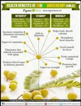 Amla the Powerhouse of Health Benefits