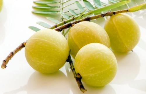 Indian Gooseberry (Amla) Powder
