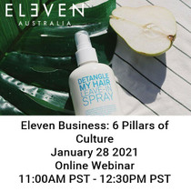 Other Brands Eleven Business 6 Pillars of Culture 1.28 Virtual