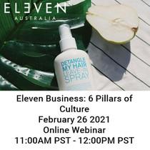 Eleven 6 Pillars of Culture 2.25 Virtual