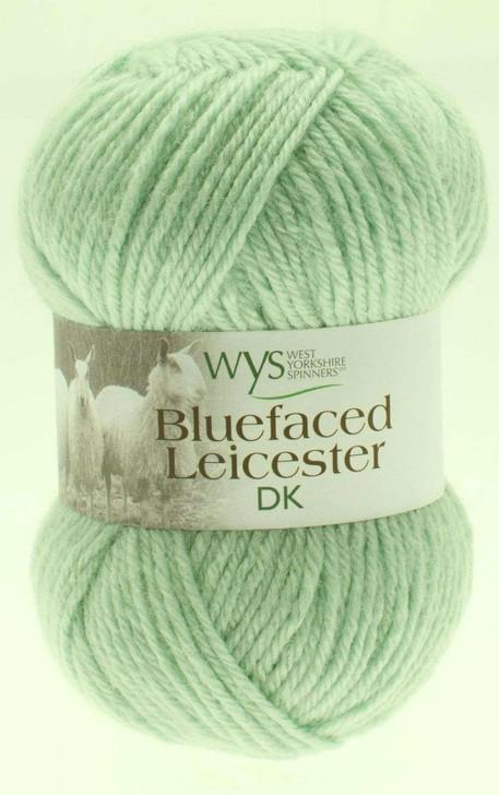 WYS Blue Faced Leicester DK Yarn - 50g - Sage (301)