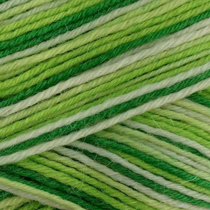 WYS Aire Valley DK Yarn - 100g - Mojito (879)