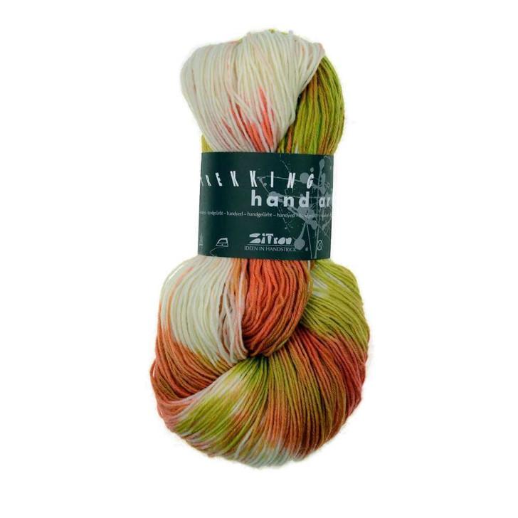 Trekking Hand Art Sock Yarn Superwash (751)