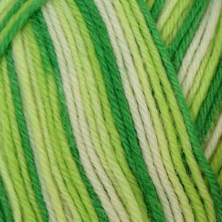 WYS Aire Valley ARAN Yarn - 100g - Mojito (879)