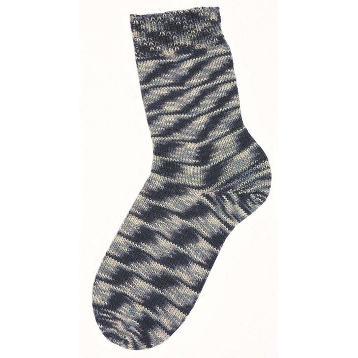 S+S Fortissima Color Sock Yarn (2407)