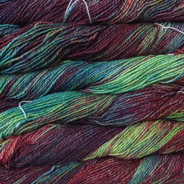 Malabrigo Dos Tierras Yarn - Camaleon (684)