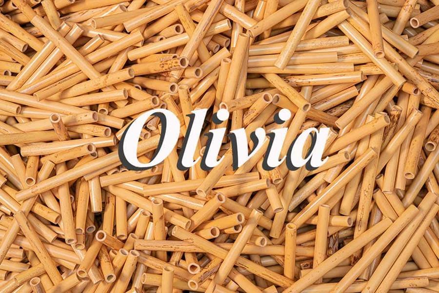 Olivia Oboe Tube Cane