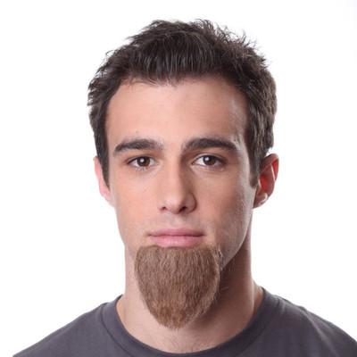Beard B1 Alternate