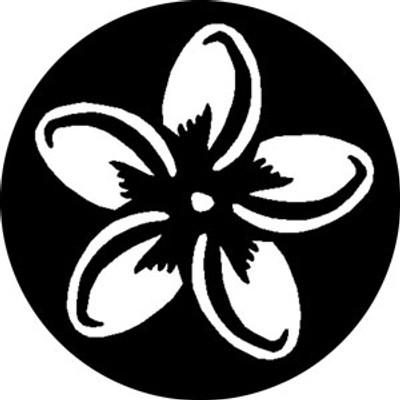 Plumeria - Rosco Gobo #78428