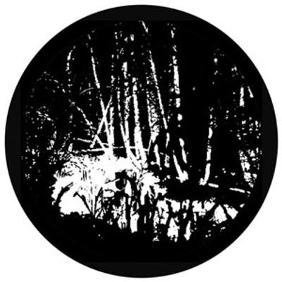 Swamped - Rosco Glass Gobo #81176