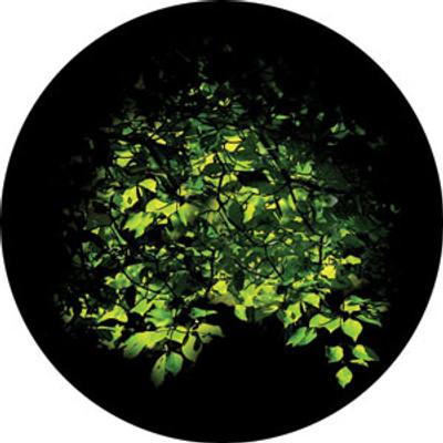 Spring Bower - Rosco Color Glass Gobo #86705