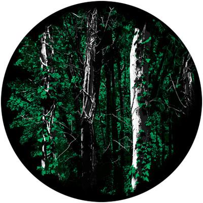 Backwoods - Apollo Glass Gobo #C2-1158