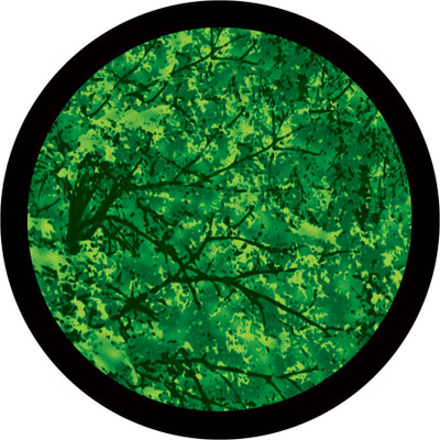 Trees  Far - Apollo Glass Gobo #C3-0096