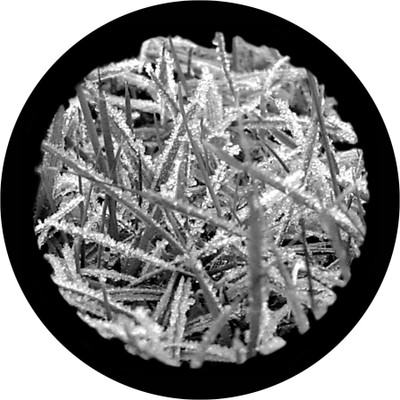 Frosted Grass - Apollo Glass Gobo #SR-1011