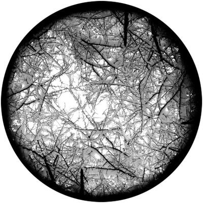 Underbrush Snow - Apollo Glass Gobo #SR-6130