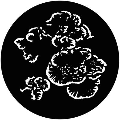 Undersea Foliage 3 - GAM Gobo #821