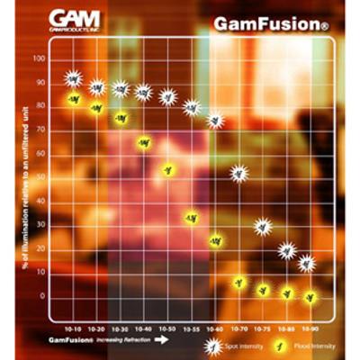 GAM Fusion