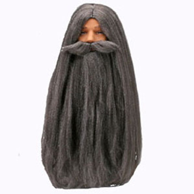 Wizard Wig & Beard Set