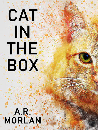 Cat in the Box, by A.R. Morlan (epub/Kindle/pdf)