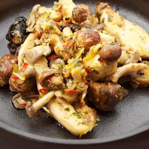 Spice Vine - Garlic Gluttony