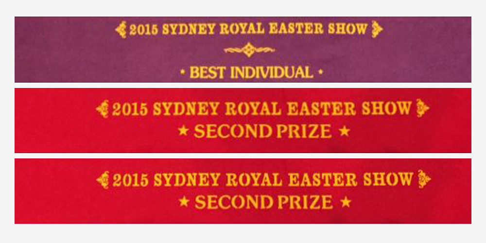Awarded 3 Ribbons at the Royal Easter Show for our Free Range Pigs.