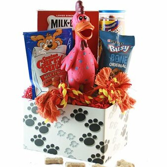 It's a Dogs' Life: Pet Dog Gift Basket