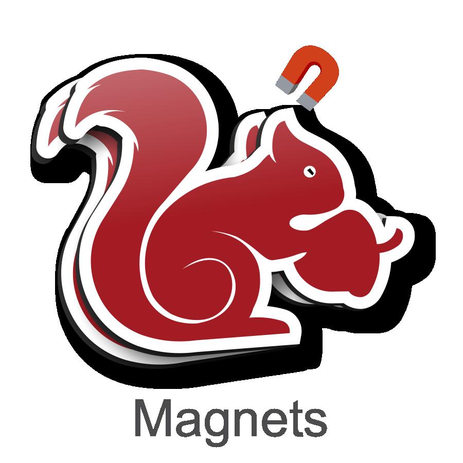 magnets fridge full colour vehicle die cut square round rectangle