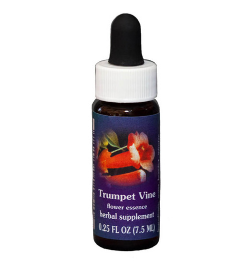 Trumpet Vine Flower Essence