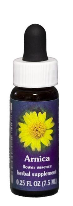 Arnica Flower Essence