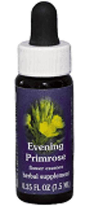 Evening Primrose Flower Essence
