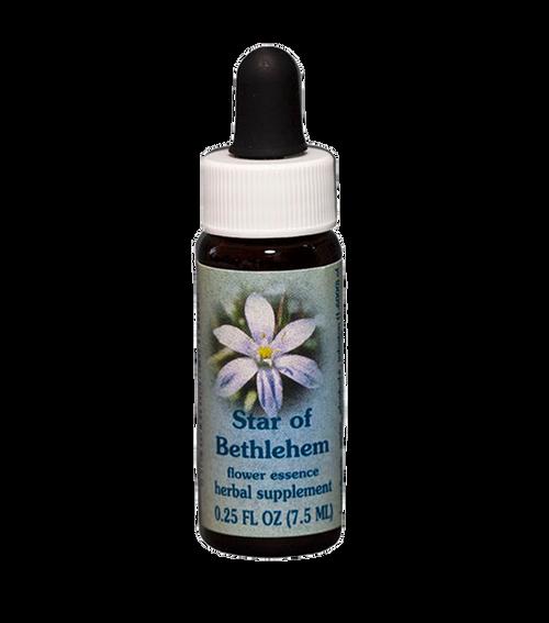 Star of Bethlehem Flower Essence