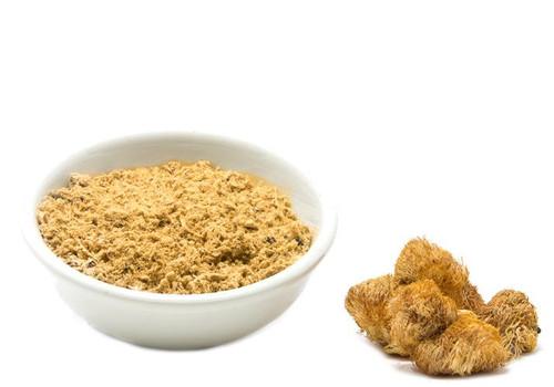 Organic Lion's Mane Powder