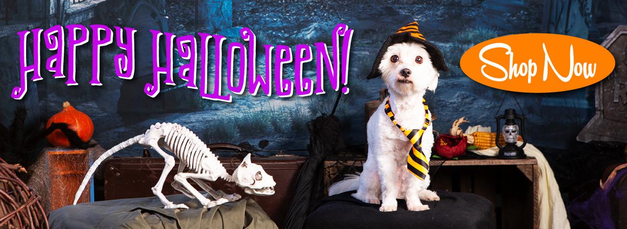 Fun and Spooky toys & treats!