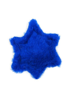 Star of David plush Made in USA dog toy - Front