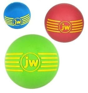 JW Pet ISqueak Ball Large squeaker ball for dogs