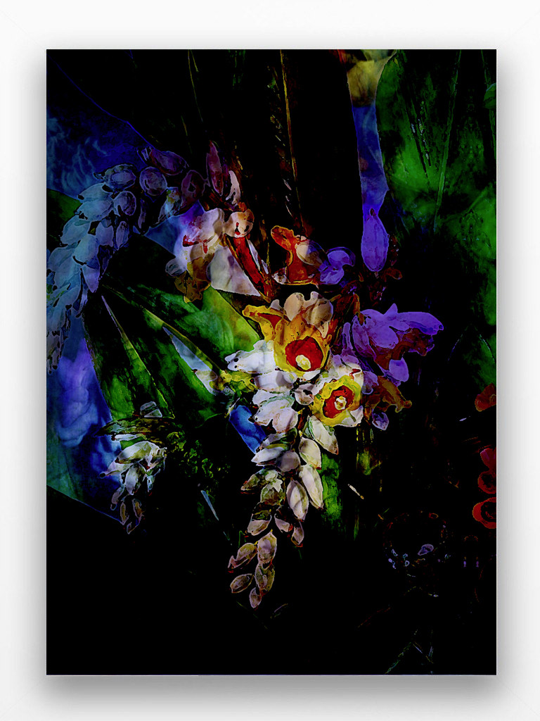 Art Print - Flower Power - Luminescent