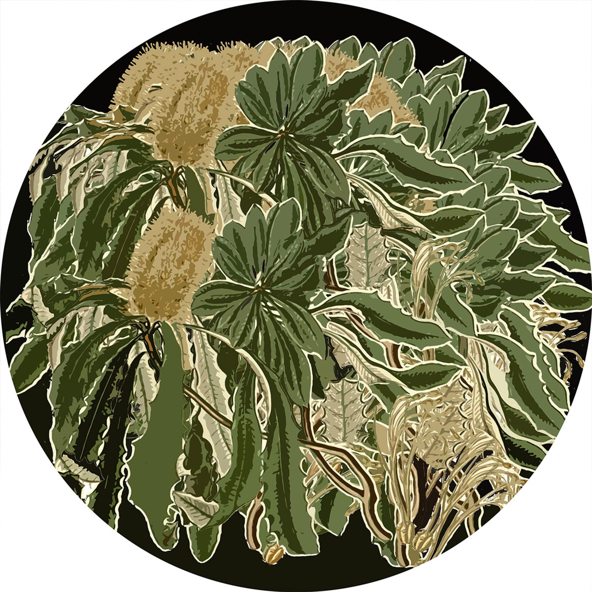 Art Decals - Banksia
