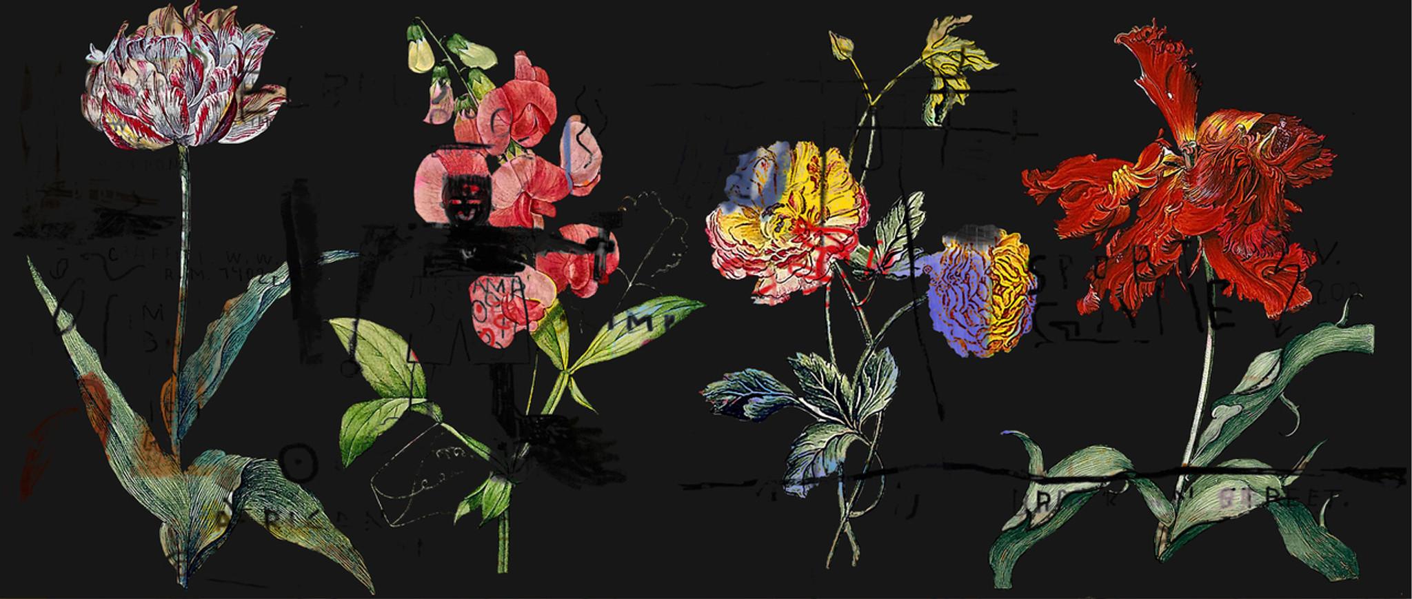 Wallpaper - Chiaroscuro on Steroids - In Living Colour