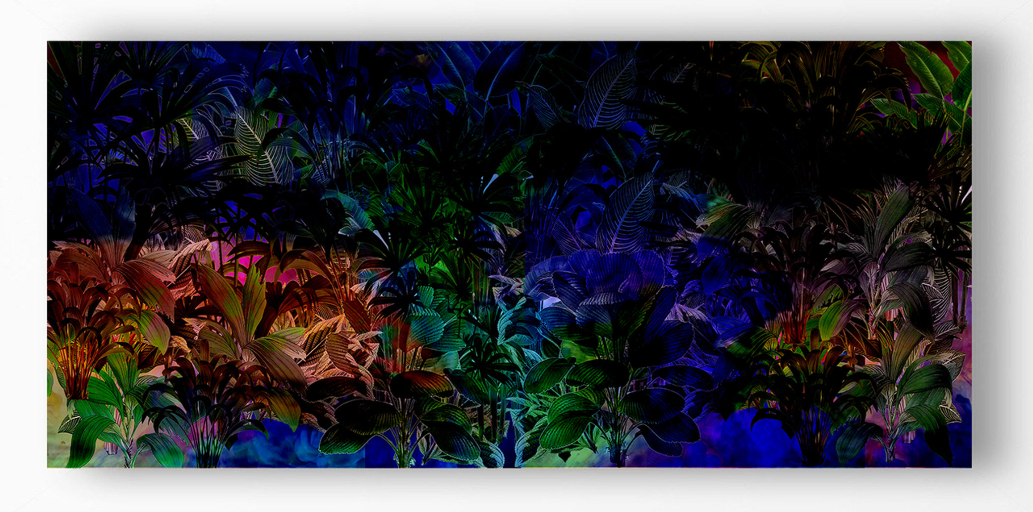 Art Print - Jungle Vibe - Hyperbole