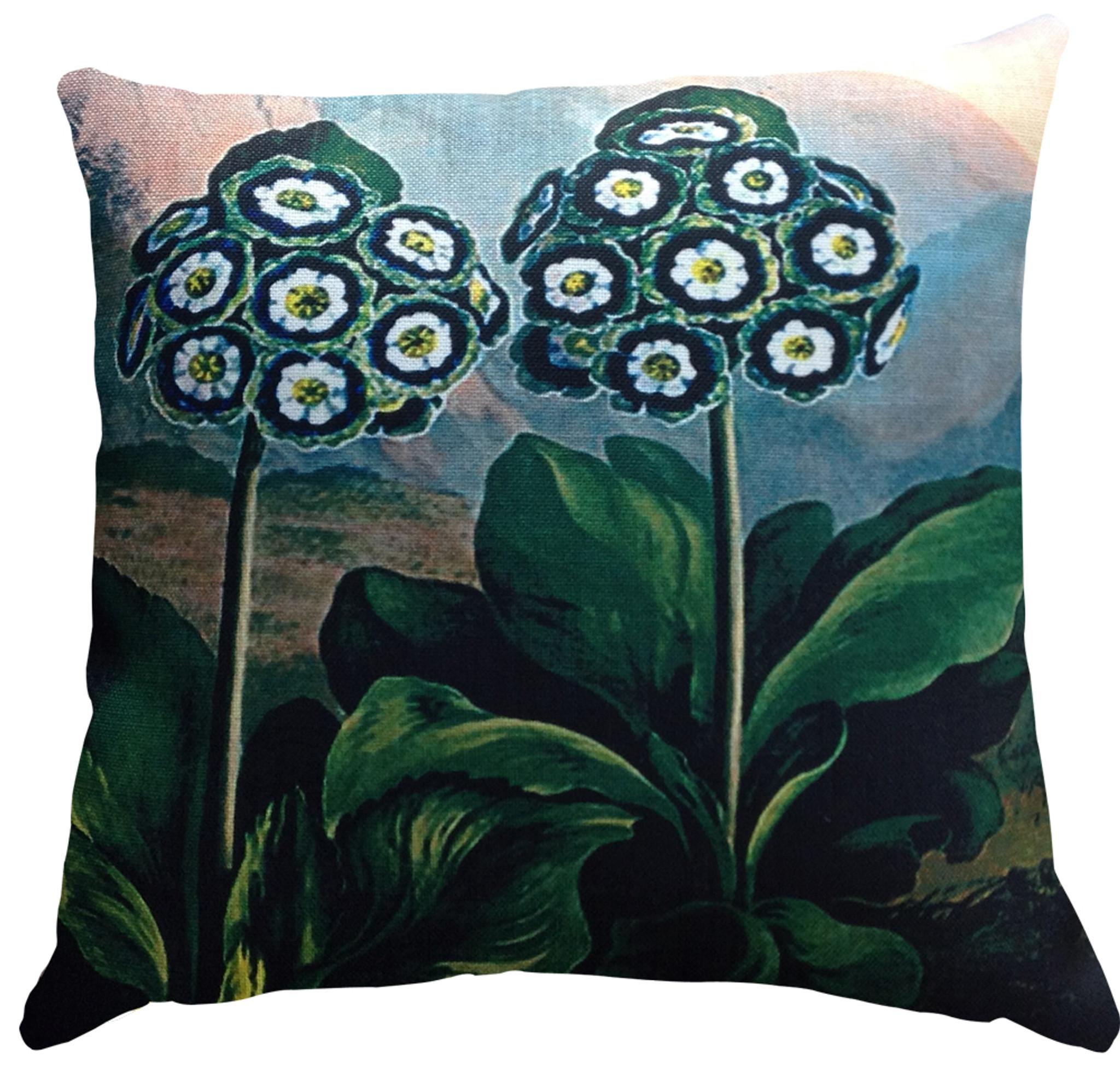 Cushion Cover - Belles Fleurs Auriculas