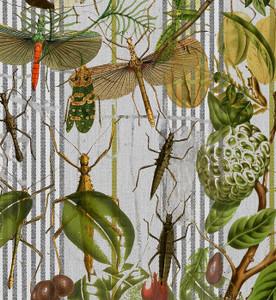 Fabric - Botanical Ticking - Bug Mania