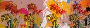 Wallpaper - Blurred Vision - Swipe Right