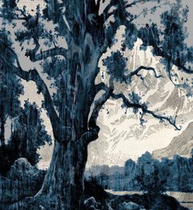 Wallpaper - Blue Mountains