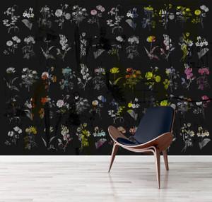 Wallpaper - Chiaroscuro - Black Magic